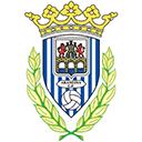 Escudo del equipo 'Arandina'