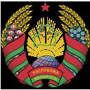 Escudo del equipo 'Belarus'