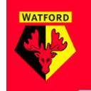 Escudo del equipo 'Watford'