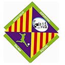 Escudo del equipo 'Palma FS'