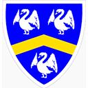 Escudo del equipo CR Cisneros