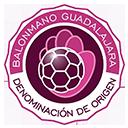 Escudo del equipo 'Q. BM Guadalajara'