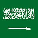 Escudo del equipo 'Arabia Saudí'