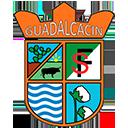 Escudo del equipo 'Guadalcacín'