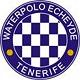 Escudo del equipo 'Tenerife Echeyde'