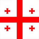 Bandera de GEO