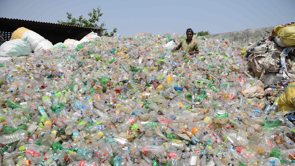 Descubre cuánto sabes sobre la realidad de los desechos de plástico