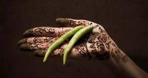 Paladar hindú