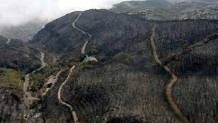 Ver vídeo  '2012 es el año con más incendios forestales desde que hay estadísticas'