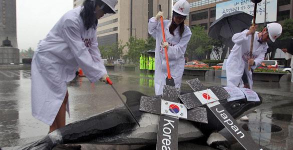 Las protestas han paralizado los planes de Corea del Sur de reanuda la caza científica de ballenas