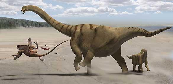 El 'Brontomerus mcintoshi' utilizaba sus músculos para patear a sus adversarios.