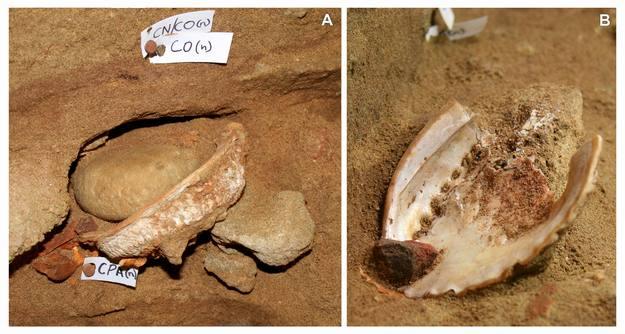 La mezcla del ocre fue usada probablemente hace 100.000 años para decorar el cuerpo o realizar sencillas obras de arte.