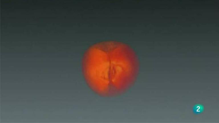 Agrosfera - Laboratorio de ideas - Alimentos 3D