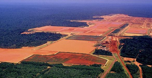 Imagen de la selva amazónica, que está fragmentada por la construcción de una fábrica maderera y de zonas de cultivo