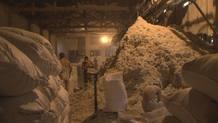 El amianto está prohibido en Europa, pero está haciendo su reaparición, por medios aparentemente legales