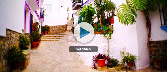 Andalucía, verde y blanca