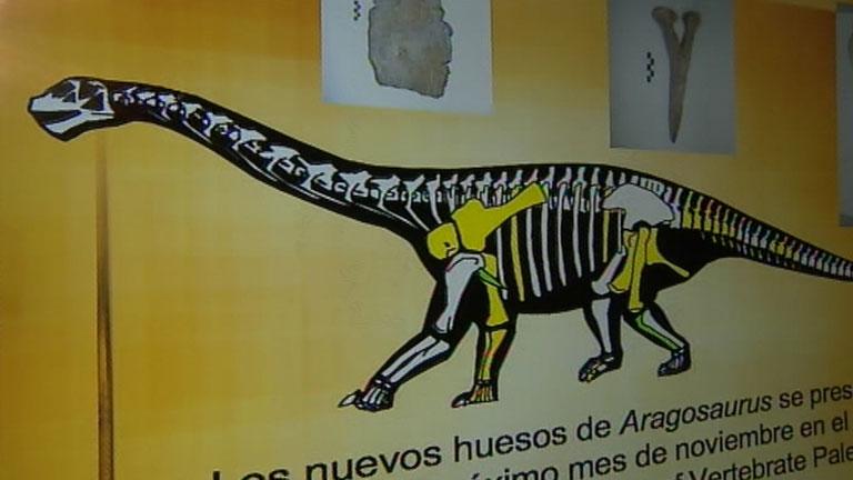 El primer dinosaurio descrito en España, el Aragosaurus, es más viejo de lo que se creía