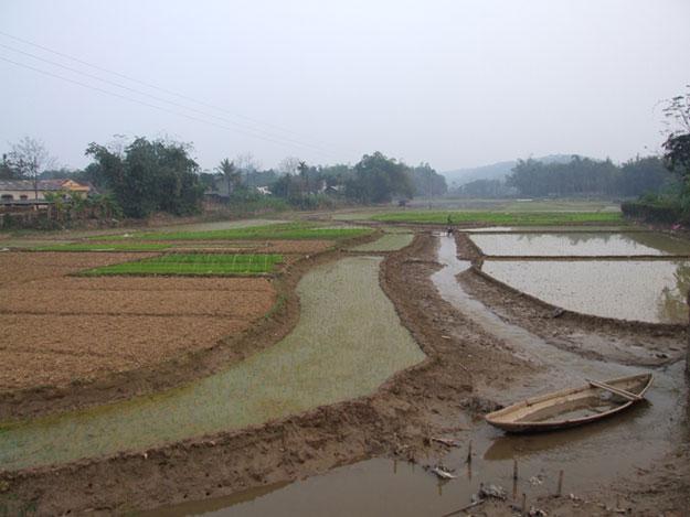 Arrozales y cultivos en Bang Gia, en Vietnam