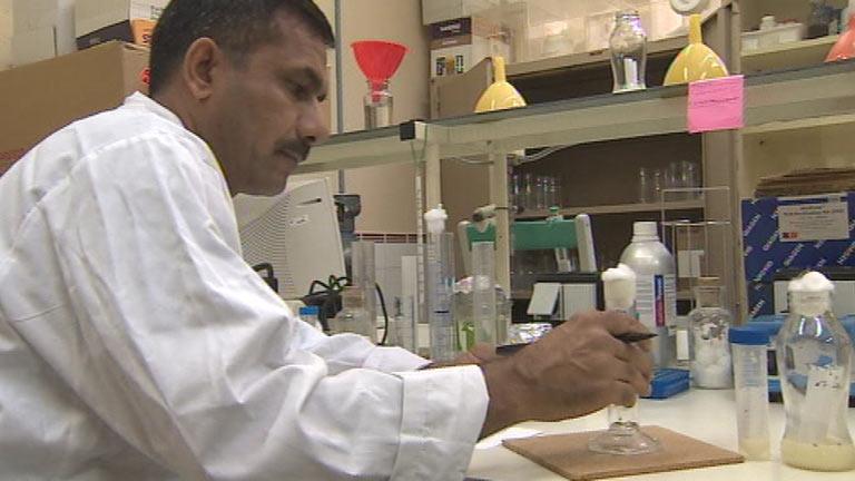 Científicos baleares diseñan una molécula para luchar contra el alzheimer