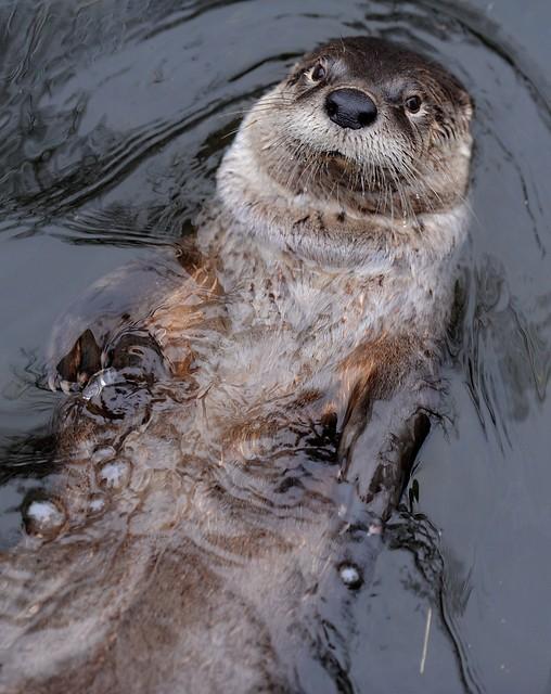Un bañito relajante