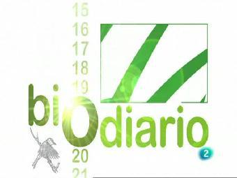 Ver v?deo  'Biodiario - La lagartija de Valverde'