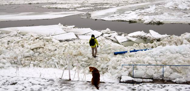 Bloques de hielo en el Danubio, a su paso por Belgrado