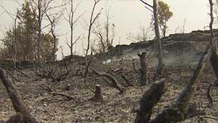 Ver vídeo  'Los bomberos controlan el incendio forestal en Prats de Rei'