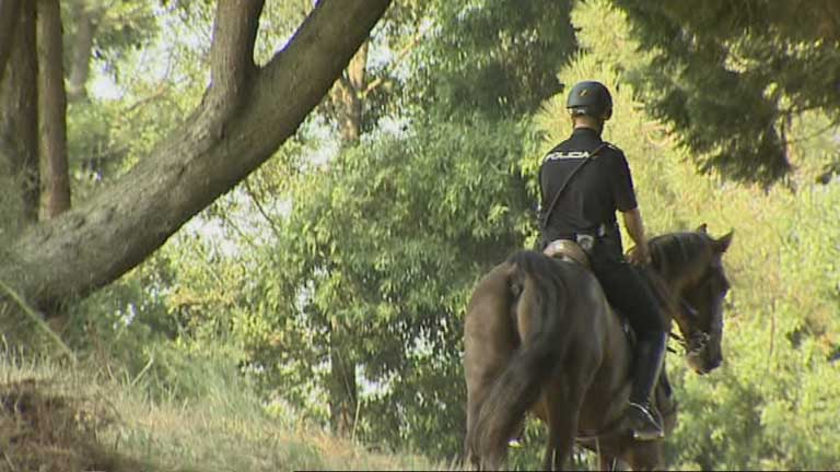 La Policía Nacional vigilará a caballo los montes de Galicia