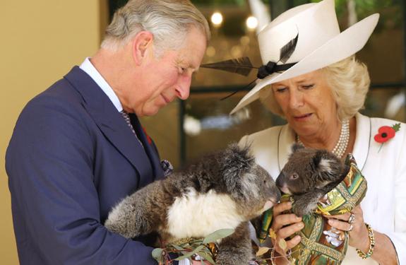 Camilla, divertida y cercana en Australia