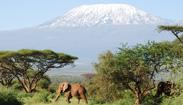 Cap. 7: Kenia y Somalia: placer y dolor de África