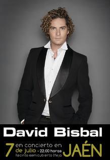 Cartel del concierto de David Bisbal en Jaén