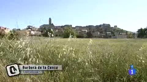Ver vídeo  'Mi casa, mi cruz - Barberá de la Conca- Divididos por una grieta'