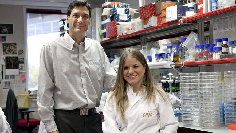 Generación de células madre embrionarias en un ser vivo