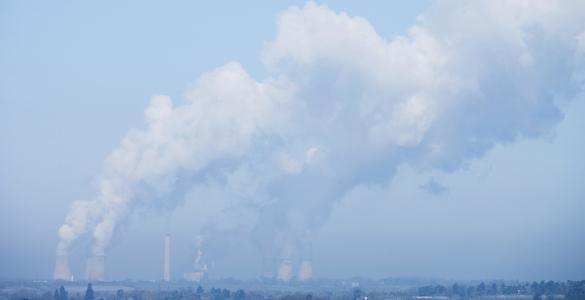 El estudio sugiere ubicar depósitos con orina y alpechín en las chimeneas para absorber los gases contaminantes