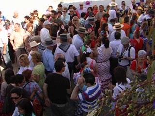 Ver v?deo  'Comando Actualidad - Gines, Sevilla'