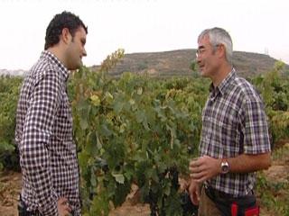 Ver v?deo  'Comando Actualidad - Haro, La Rioja'