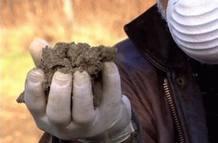 El compost contiene sustancias cancerígenas como los furanos