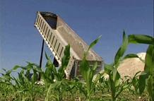 El compost se utiliza como fertilizante ecológico