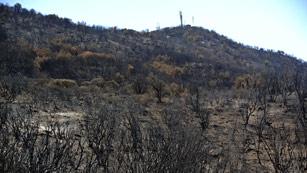 Ver vídeo  'Continúa activo bajo tierra el incendio de La Gomera'