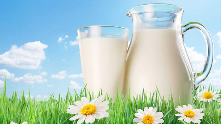 Las cuentas del lechero