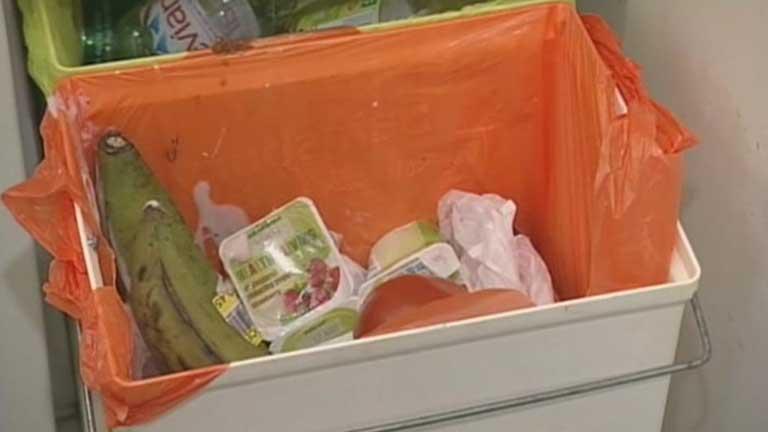 Un estudio indica que la mitad de los alimentos que se producen en el mundo terminan en la basura