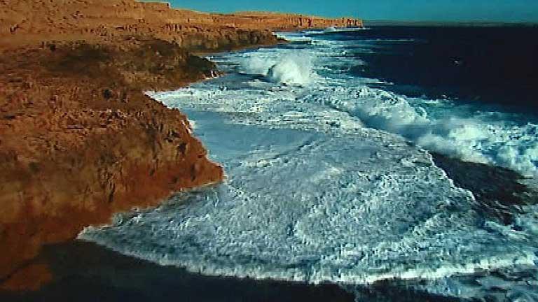 La ONU pide proteger los mares en el Día Mundial de los Océanos