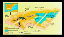 Diagrama de la cuenca de Guadix-Baza con el lago (azul) y la situación de los yacimientos.
