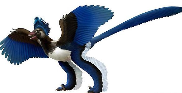 El dinosaurio que se hacía pasar por pájaro