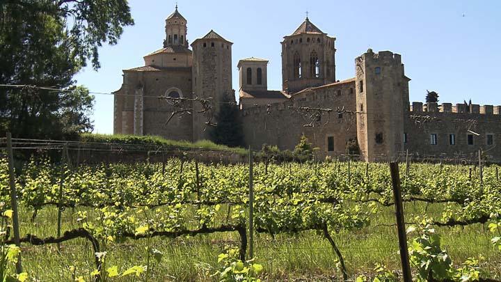 Entre Vinyes - D.O. Conca de Barberà