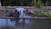 Documenta2 - La aventura del agua: El agua y su hombre