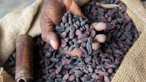 Documentales culturales - Planeta gastronómico: La historia del chocolate
