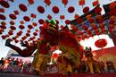 Performers take part in a lion dance during the opening of the temple fair at Ditan Park in Beijing