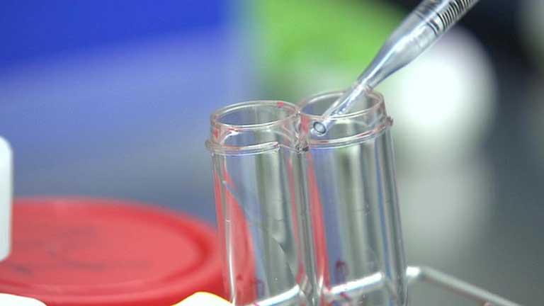25.000 embriones congelados acumulados en el limbo legislativo