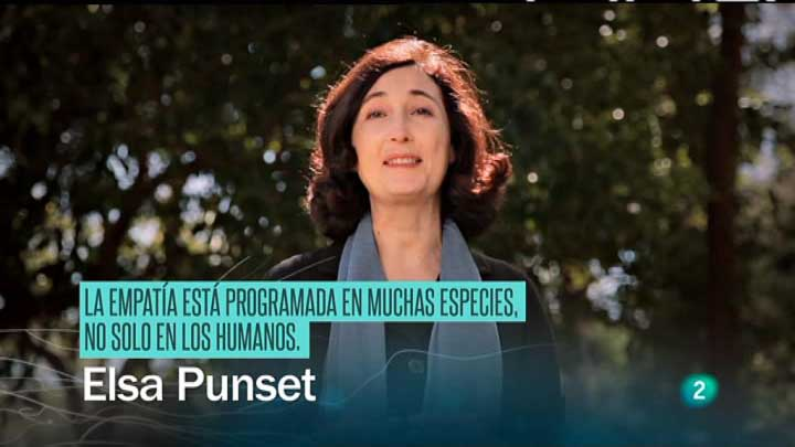 Redes - La mirada de Elsa -  Empat&iacute;a y altruismo